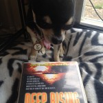Chihuahua and Deep Rising DVD