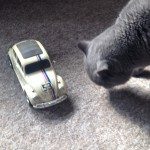 Our cat and our remote controlled Herbie