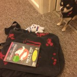 Chihuahua with toy Staypuft and Ghostbusters DVD