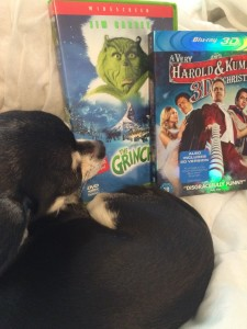 Chihuahua and Christmas DVD's