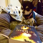 Chihuahua and 5th wave book