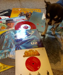 Chihuahua and vinyl