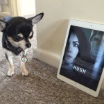 Hush (2016) – Shout it out loud! Its not a remake but something new