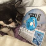 Chihuahua and The Walk BluRay