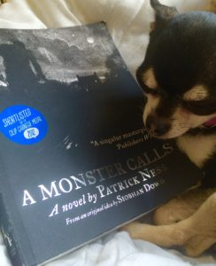 Chihuahua with A monster calls book