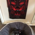 Chihuahua and Avengers poster