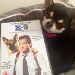 Chihuahua and K-9 on DVD