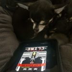Chihuahua with Ready Player one by Ernest Cline on Kindle