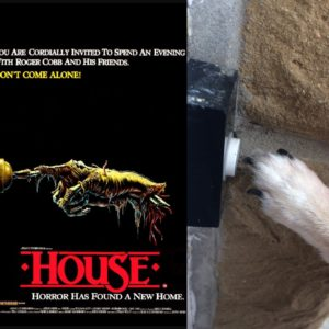 Chihuahua recreates the House iconic poster