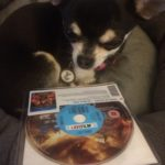 Chihuahua with Gods of Egypt BluRay