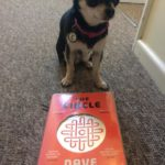 Chihuahua with The Circle book