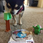 Chihuahua with Angry Birds game and BluRay