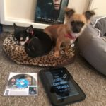 Chihuahuas with Kindle and Girl on the train Bluray