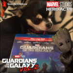 Chihuahua with Guardians of the Galaxy bluray