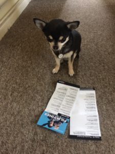 Pepper the Barking Mad About Films checks out the film times