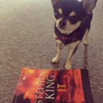 Chihuahua with It book by Stephen King