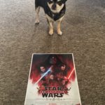 Barking Mad About Films Review The Last Jedi