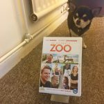 Chihuahua with DVD of We Bought A Zoo