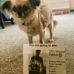 Chihuahua with Misison Impossible Fallout cinema Ticket