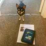 Chihuahua with our ticket to see The Nutcracker and the Four Realms with the Short Story that inspired it on Kindle