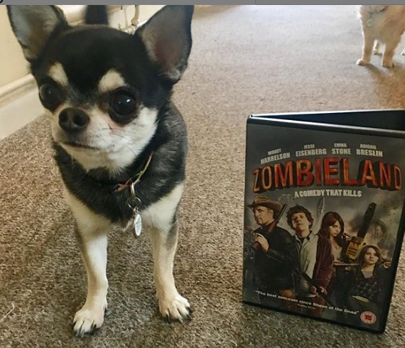 Pepper with Zombieland DVD