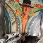 Chihuahua and Vinyl record