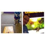 Chihuahua with The Girl With All The Gifts Book and her Owner with the film poster