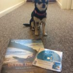 Chihuahua with rental copy of Pete's Dragon