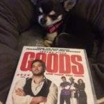 Chihuahua with 'The Goods' on DVD