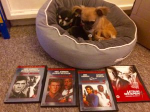 Chihuahuas with the 4 lethal weapon films on DVD
