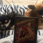 Chihuahuas with Last Action Hero on DVD