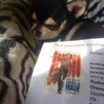 Chihuahua with cinemas ticket for American Made