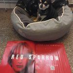 Chihuahua with Red Sparrow poster
