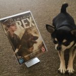 Chihuahua with Rex/Megan Leavey on DVD