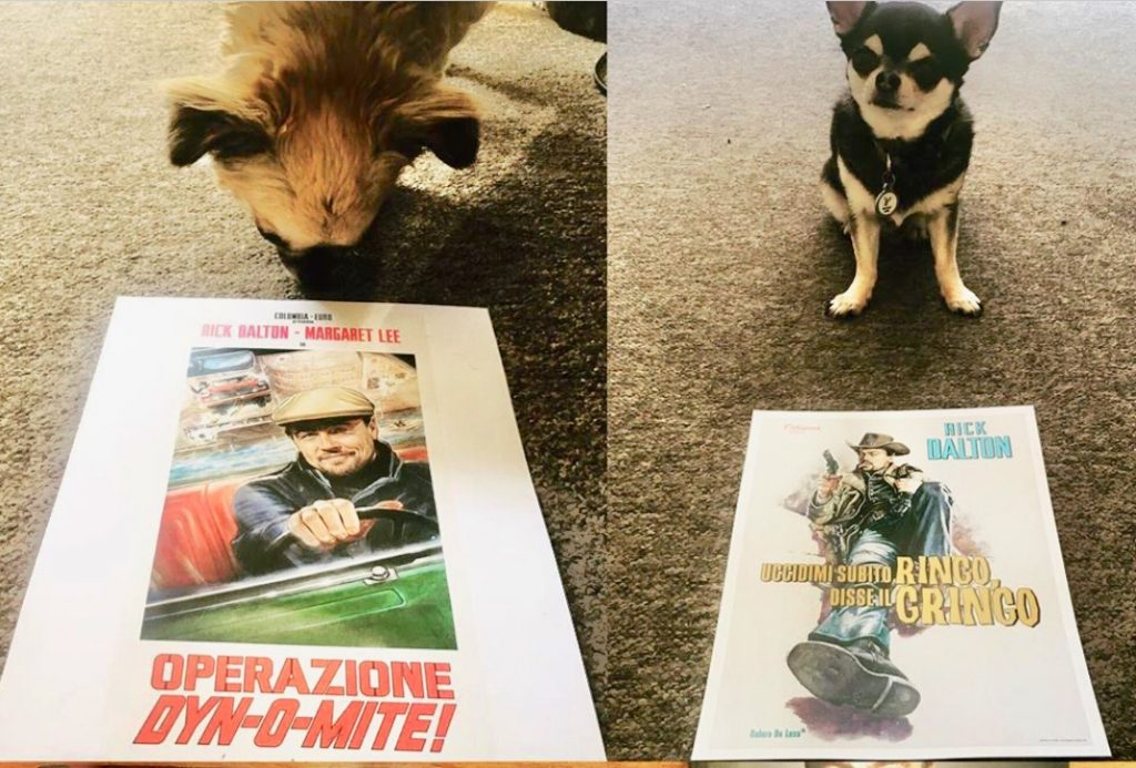 Pepper with Rick Dalton posters